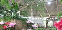 花と緑の展示場