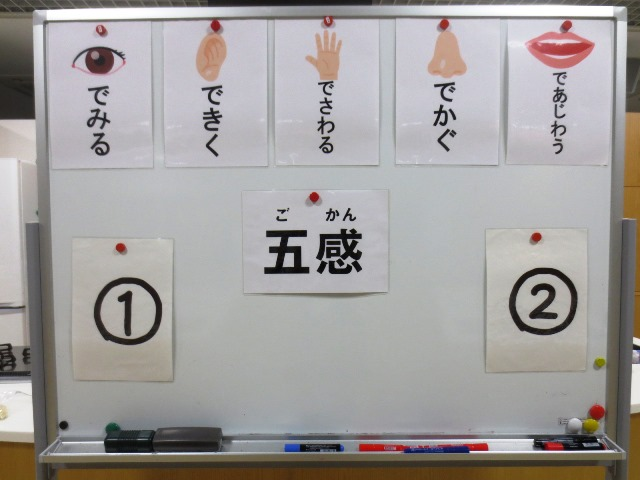 団体プログラム「五感を使った食材当てクイズ」