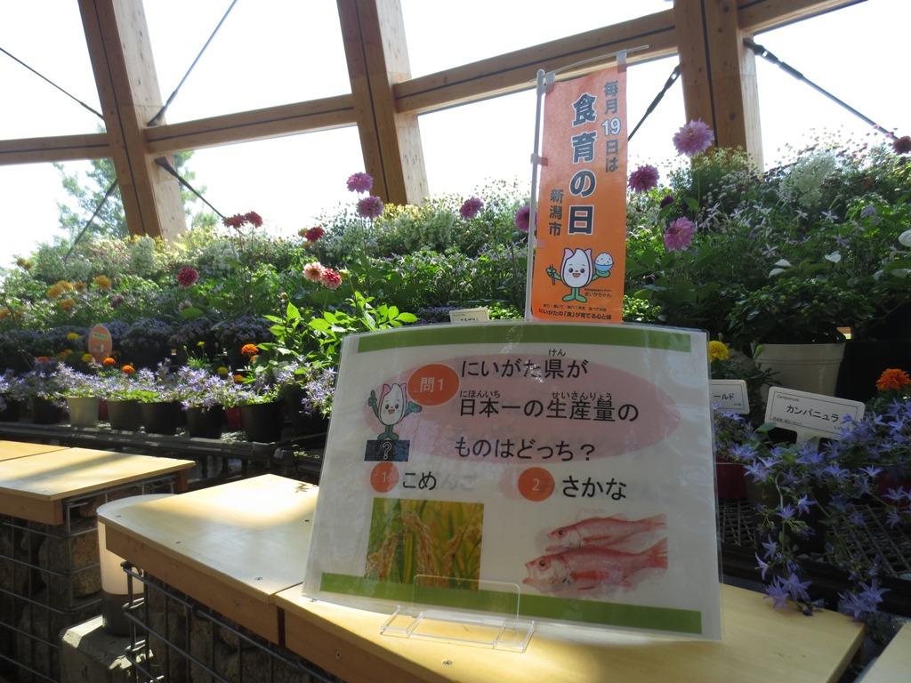 食育ランド「クイズに挑戦 食育・花育はかせになろう」