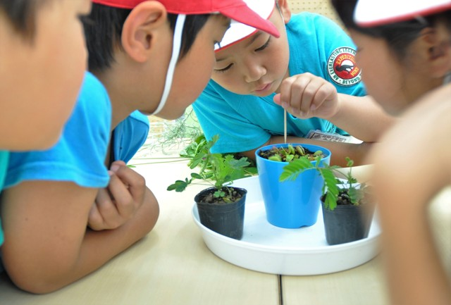 団体プログラム【植物の不思議ミニ講座】