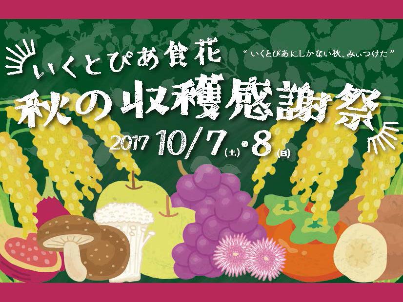 秋の収穫感謝祭