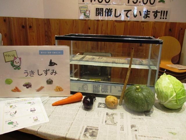 食育ランド「たのしい実験室 うく?しずむ?野菜のふしぎ」