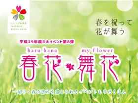 春花・舞花