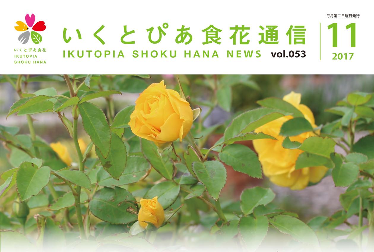 通信vol.052_サムネイル