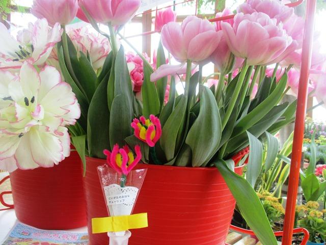 食育ランド「食卓に花を モールでチューリップ作り」