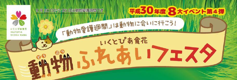 8大イベント第4弾!動物ふれあいフェスタ
