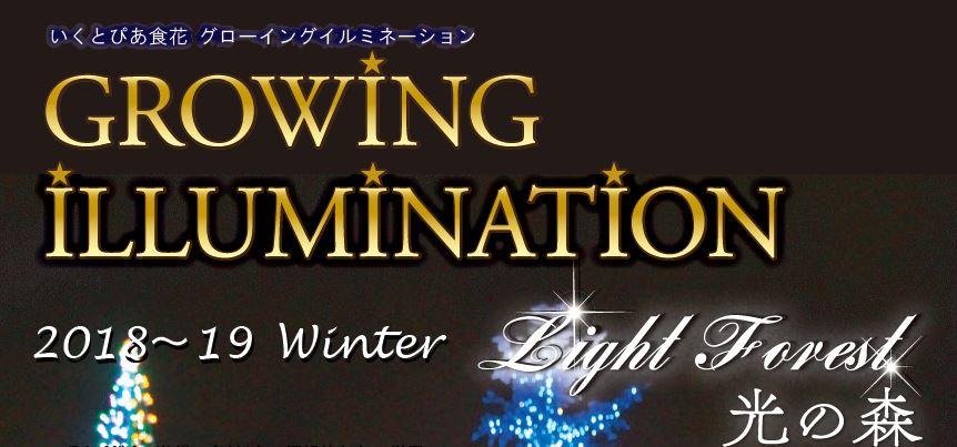GROWING ILLUMINATION Winter いよいよはじまります!
