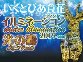 いくとぴあ食花 WINTER ILLUMINATION 2019-2020