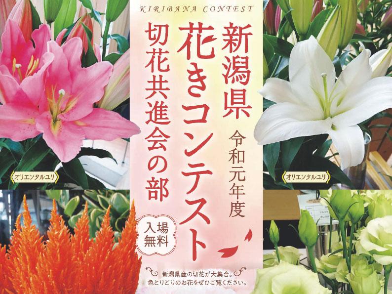 新潟県 花きコンテスト 切り花共進会の部
