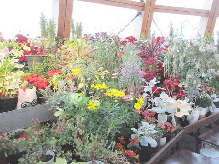 四季折々の花が楽しめる空間