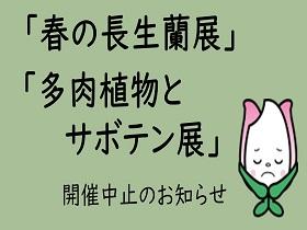 中止【春の長生蘭展】【多肉植物とサボテン展】