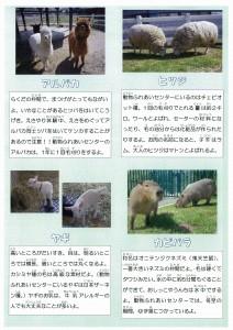 動物資料1