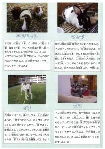 動物資料2