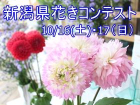 令和3年度新潟県花きコンテスト