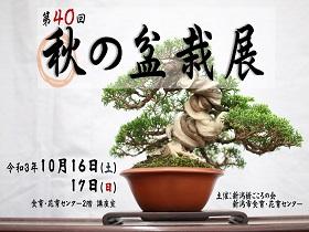 「第40回・秋の盆栽展」のご案内